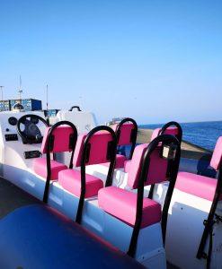 850 CM Pink Phantom
